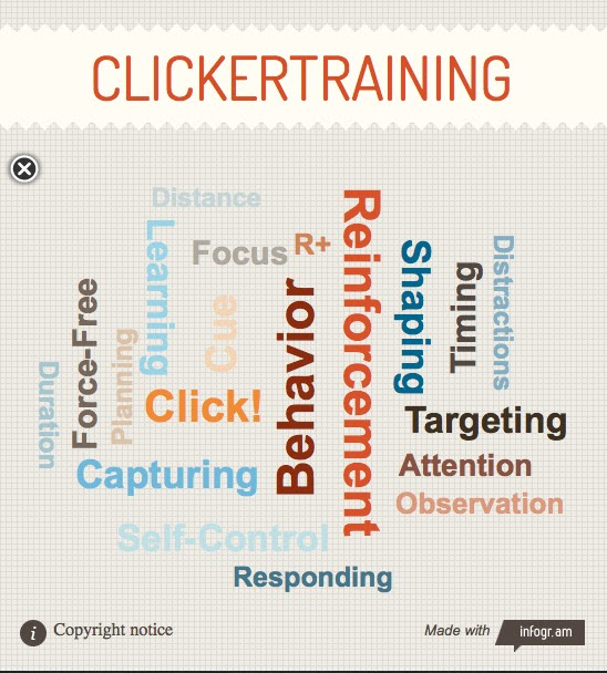 clickertraining infographic