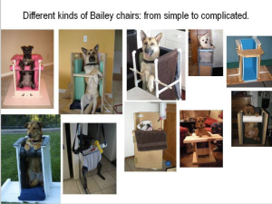 Bailey chairs